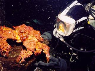 Pacific Undersea Gardens © Pacific Undersea Gardens